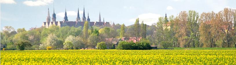 Vermessungsbüro in Merseburg (Landkreis Merseburg Querfurt)